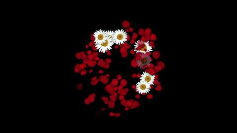 rose petals & daisy shaped wreath,wedding background,Valentine's Day Animation