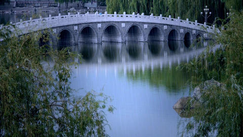 Arch bridge on lake in willows Park Footage