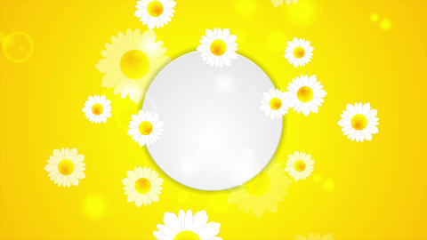 Summer video animation with camomiles Animation
