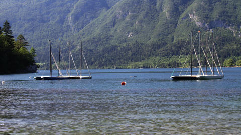 Timelapse - Anchored sailing boats floating on a lake Live Action