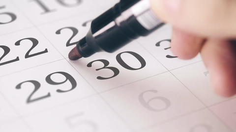 Marked the thirtieth 30 day of a month in the calendar transforms into DEADLINE Live Action