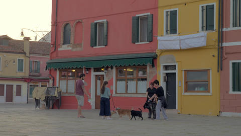 People with dogs talking in the street. Burano, Italy Archivo