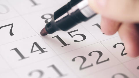 Marked the fifteenth 15 day of a month in the calendar transforms into DEADLINE Live Action