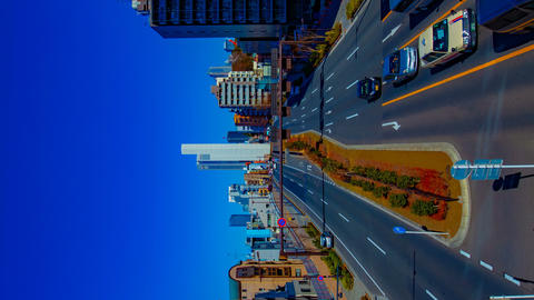 A timelapse of the city street at the downtown in Tokyo daytime vertical shot ビデオ