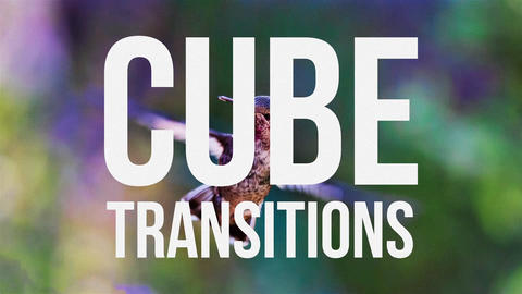 Cube Transitions After Effects Template