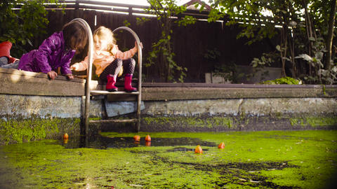 Two girls playing near the old pool overgrown with duckweed Footage