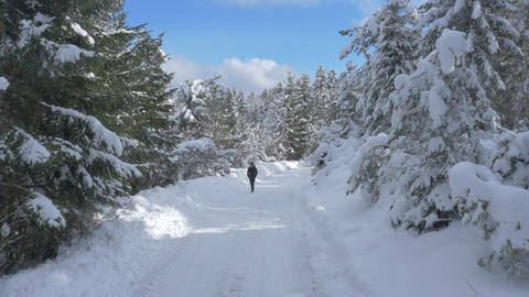 Aerial - Flyover man walking down the snowy road above the snowcapped forest Footage