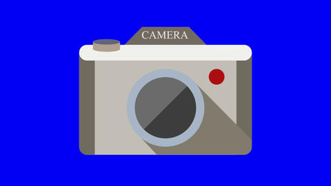 Two cameras animated icon. Transparent background Animation