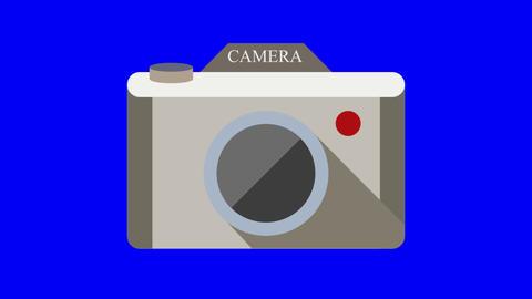 Two cameras animated icon. Transparent background Animación