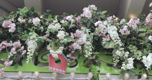 Decorative floral decoration Footage