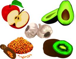 Foods to reduce cholesterol Vector