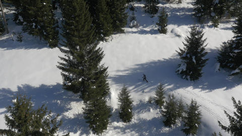 Aerial - Cross-country skiing in nature Footage