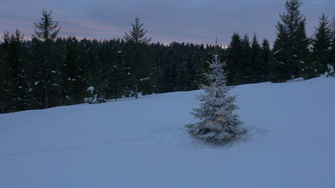 Aerial - Around the Christmas tree with lights placed on a snowy field in forest Footage