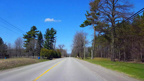 Driving Rural Road Along Animals and Farmland During Spring Day. Driver Point of View POV Along Live Action