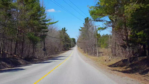 Driving Countryside Forest During Spring Day. Driver Point of View POV Along Beautiful Sunny Footage