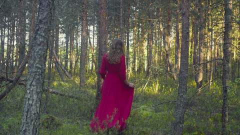 Young woman in red dress walking in the forest Footage