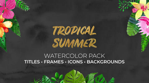 Tropical Summer Watercolor Pack After Effects Template