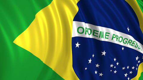Brazilian Flag Animación