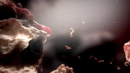 3D Scientific Animated Blood Cells with Ebola Virus Footage