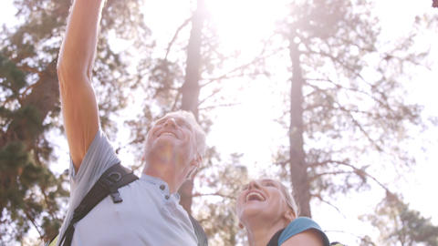 Hiker couple standing and pointing away in forest Live Action