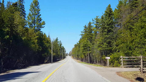 Driving Countryside Forest During Spring Day. Driver Point of View POV Along Beautiful Sunny Live Action