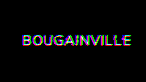 From the Glitch effect arises BOUGAINVILLE. Then the TV… Stock Video Footage