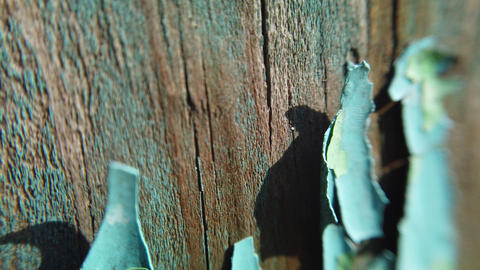 Vintage wood background with peeling paint Live Action