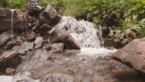 Small mountain river in the real time Stock Video Footage
