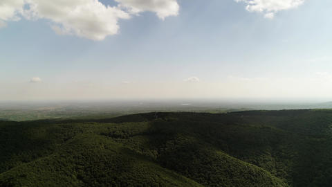 Forest drone shot city in the distance camera moving flying forward horizon sky Live Action