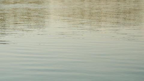 Nice water close up. Stock. Calm water on the lake on a summer day Footage