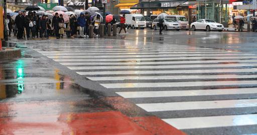 Walking people at Shibuya crossing in Tokyo rainy day ライブ動画