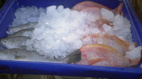 Fresh Fish on Ice at Street Market in Kamala, Thailand, Asia Footage