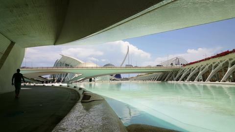 The City of Arts and Sciences, Operahouse, bridge and Hemispheric Footage
