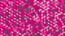 Polycubes B camo pink Animation