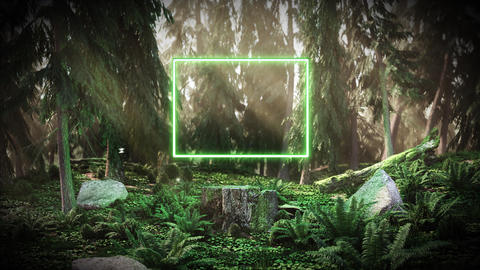 Dawn in the forest with a neon rectangle Animation