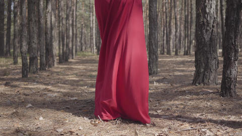Beautiful graceful girl in a red dress walks in the pine forest. Pretty young Footage