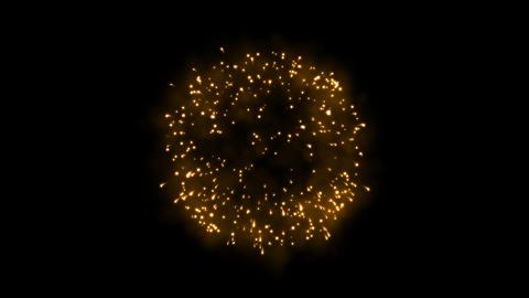 Firework 14 Animation