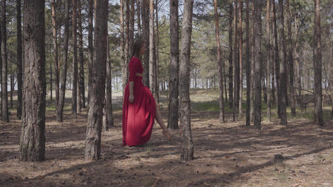 Skill graceful woman in red dress dancing in the forest landscape. Beautiful Live Action