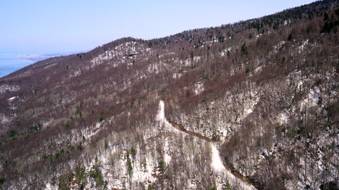 Winter forest on snowy mountain slope on blue sky landscape. View from drone flying over snowy Live Action