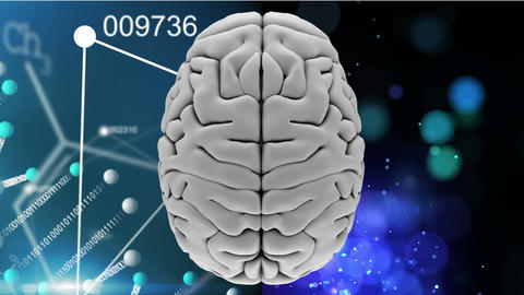 White brain with chemical details background Animation