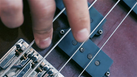 Bass Guitar. Fingers Fingering The Strings Live Action