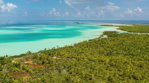 Drone video of French Polynesia Tahiti Fakarava atoll island and Blue Lagoon Live Action