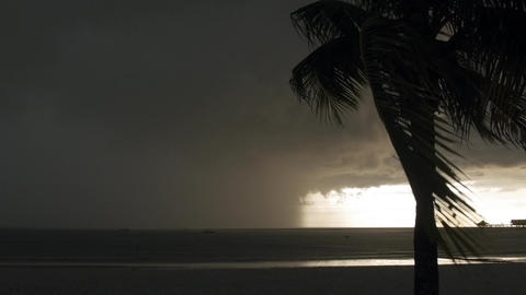 Tropical Thunderstorm in Southeast Asia with Heavy Rain on Beach with Palm Trees Footage