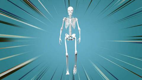 Human skeleton walking in the blue background Animation