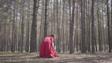 Confident pretty young woman in red dress dancing in the forest. Beautiful Archivo