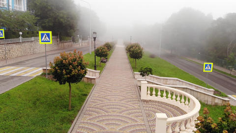 Aerial perspective of walking on a path in the park with fog Archivo