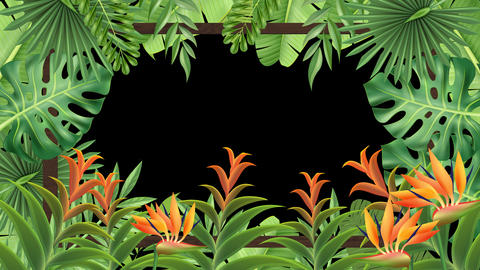 Tropical Plant Frame (Loop) Videos animados