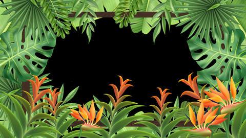 [alt video] Tropical Plant Frame (Loop)