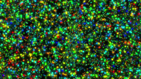 Colorful oscillating particles. Vibrant colored particles. Sci-fi composition with oscillating light Animation