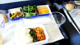Passenger on Japanese ANA flight to Tokyo, Japan eating vgml vegan meal Footage